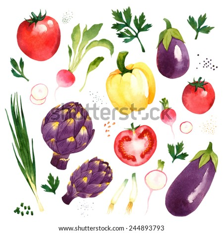 Watercolor vector vegetables set with tomato, radish, artichoke, eggplant, pepper, onion, parsley