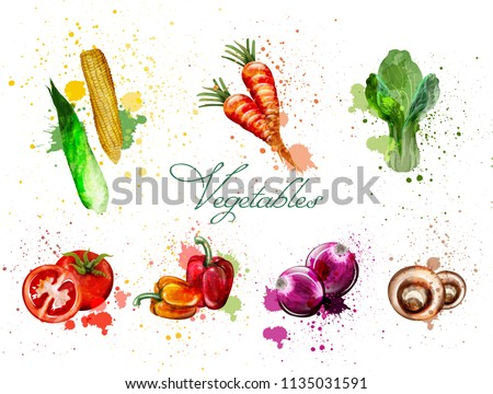 Watercolor vegetables set Vector. Delicious tomatoes, mushrooms and green leaves #1135031591