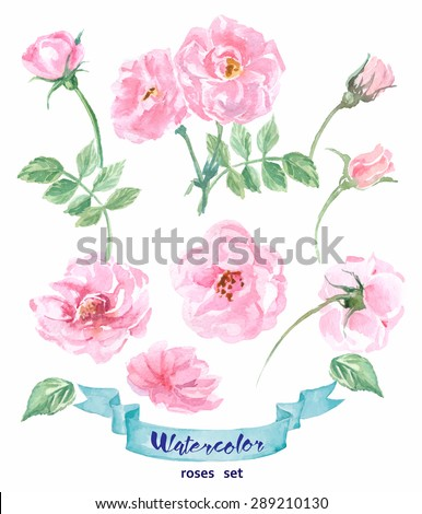 watercolor wild rose hand
