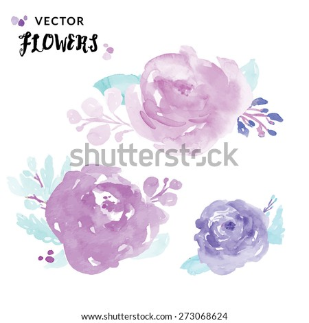 watercolour peony flowers