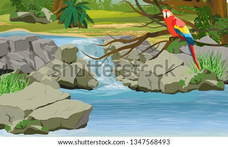 Waterfall in the jungle. Bright macaw parrot on the branches of a tropical tree. Rock, creepers, banana trees and epiphytic ferns. South America and Africa. Realistic Vector Landscape