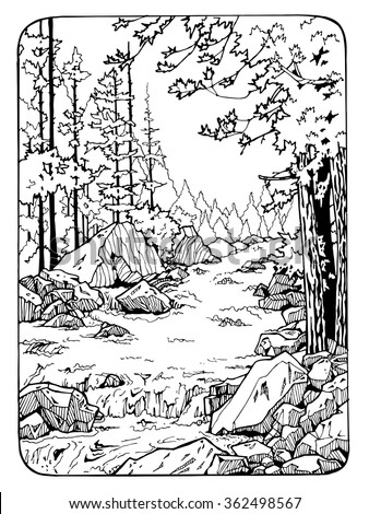 Waterfall In The Wood Coloring Page For Adults