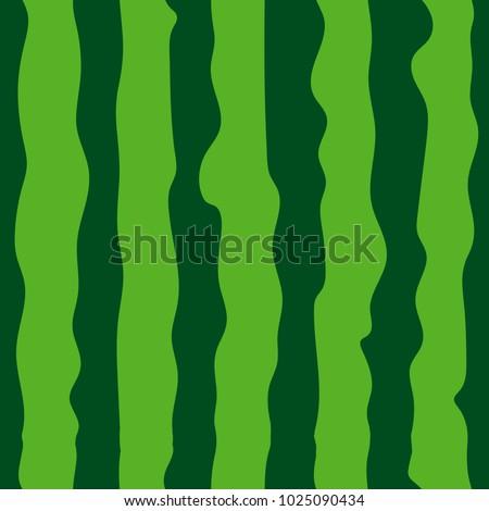 Watermelon seamless pattern. green watermelon striped background. Vector illustration.