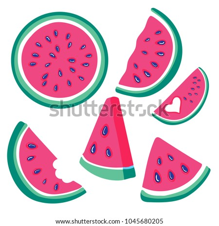 Watermelon vector set of red watermelon flesh with black seeds. Juicy summer tropical fruits. Vector illustration with slices of watermelons.