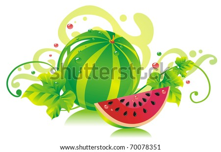 Watermelon with a water-melon slice and leaves