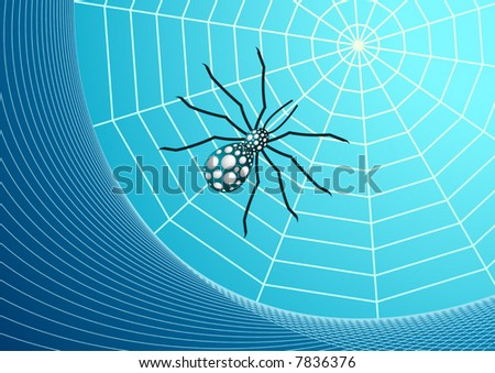 Web and spider vector illustration.