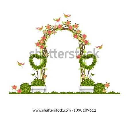 wedding arch on a white