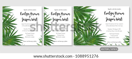 Wedding invite, invitation rsvp thank you card vector floral greenery design: Forest tropical palm leaf howea (kentia) branch green, foliage herbs elegant frame border. Watercolor cute set