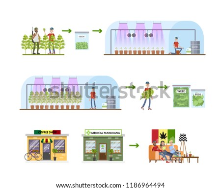 Weed production process. From harvest to the shop. Medical marijuana making. Cultivation and irrigation. Isolated vector flat illustration