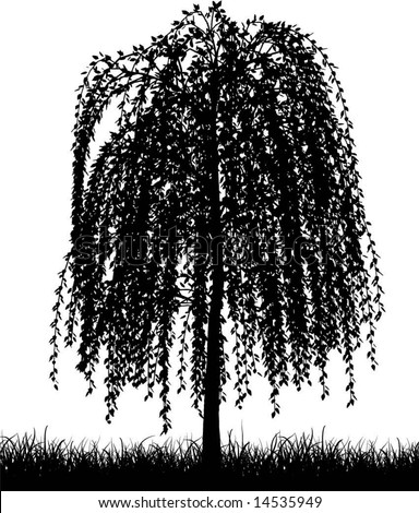 tree silhouette pictures. willow tree silhouette