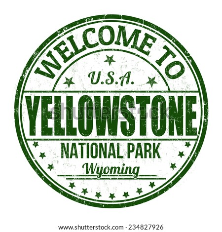 welcome to yellowstone grunge