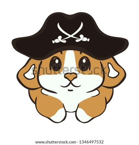 Welsh corgi dog breed vector illustration. Cute corgi puppy in pirate hat cartoon icon. Fluffy Corgi Pembroke, love dogs. Funny little pirate in  Capitan's costume. Canine theme in minimal flat style