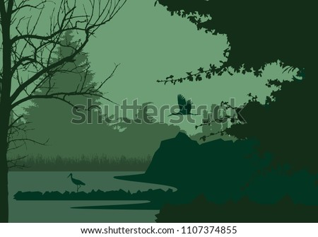 wetlands with forest and flying