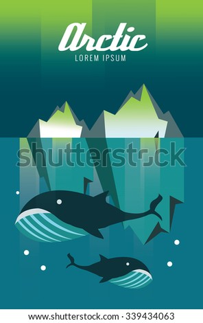 whale and iceberg arctic