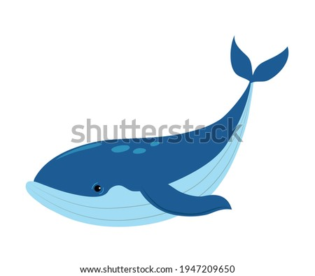 Whale as Sea Animal Floating Underwater Vector Illustration