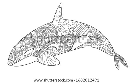 whale coloring page adult anti