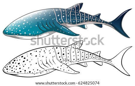 whale shark and outline