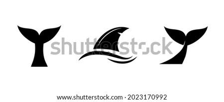 whale  shark  fish tale vector