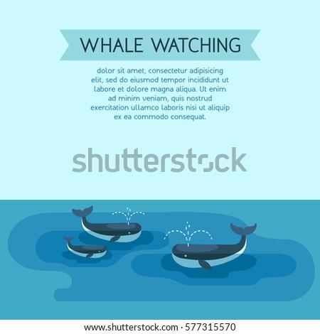 whale watching arctic scene