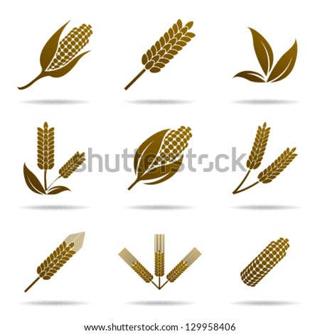 wheat and rye elements for