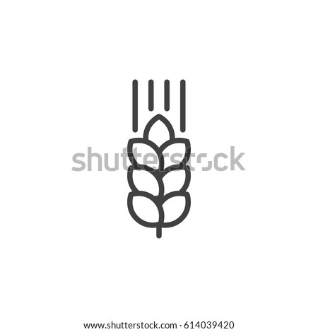 wheat ear line icon  outline...
