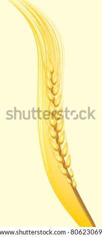 Wheat ear on the yellow background. Vector