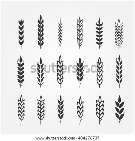 Wheat ears for logo design