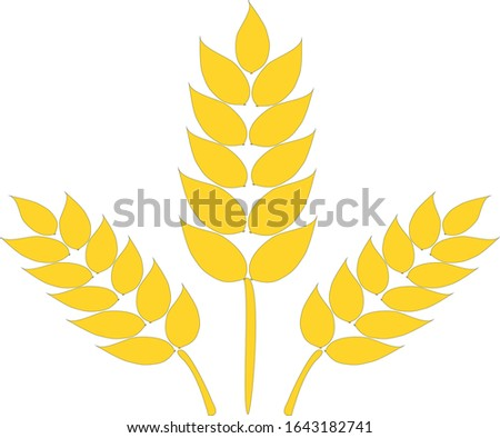 Wheat ears, wheat seed, or wheat rye, vector logo and design