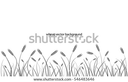 Wheat field background. Black silhouettes isolated on white. Vector.
