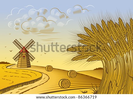 Wheat fields landscape. Vector
