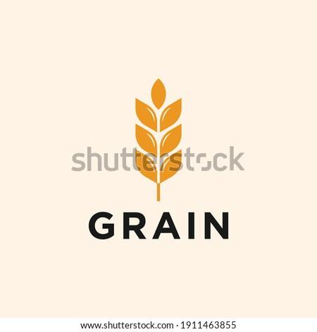 wheat grain icon vector logo