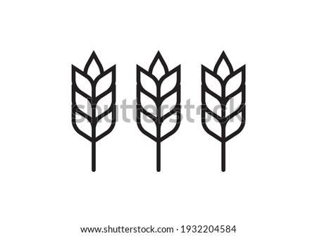 Wheat or barley outline icon. Grain symbol. Vector illustration. Stockfoto ©
