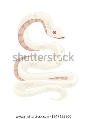 white albino snake cartoon