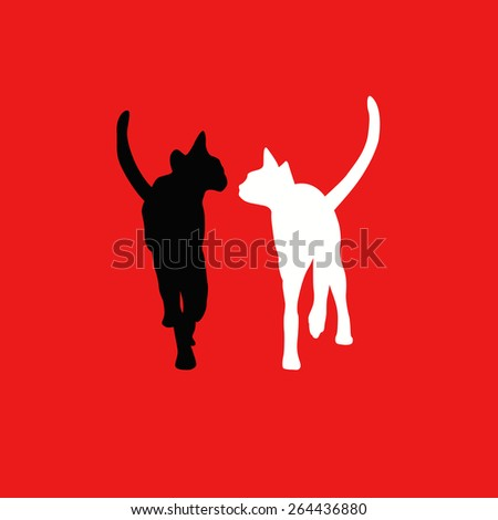 white and black cats on a red