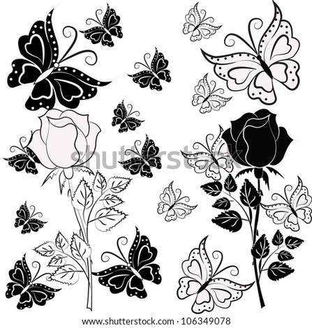 White and black rose with butterflies - stock vector