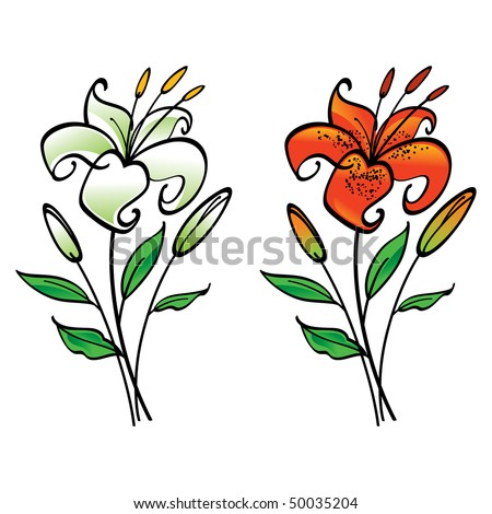 stock vector : White and Tiger Lily