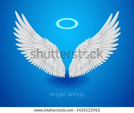 white angel wings and shining