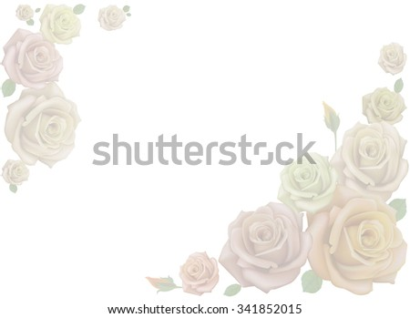 white beige pink roses light