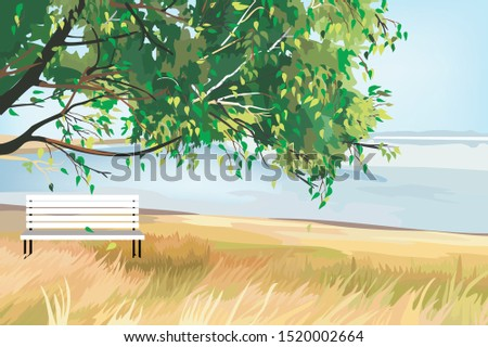 white bench under a big tree