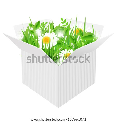 White Box With Grass, Isolated On White Background, Vector Illustration