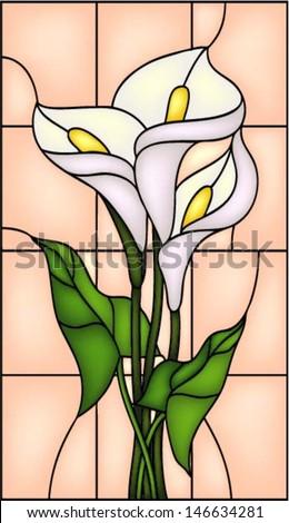 white calla lily vector