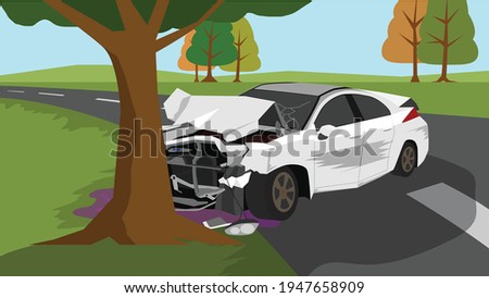 white car accident fell off the