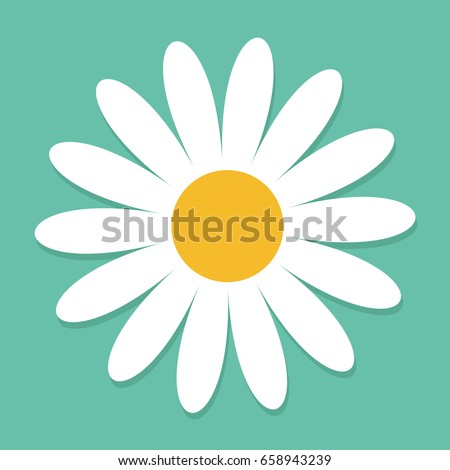White daisy chamomile. Cute flower plant collection. Love card. Camomile icon Growing concept. Flat design. Green background. Isolated. Vector illustration