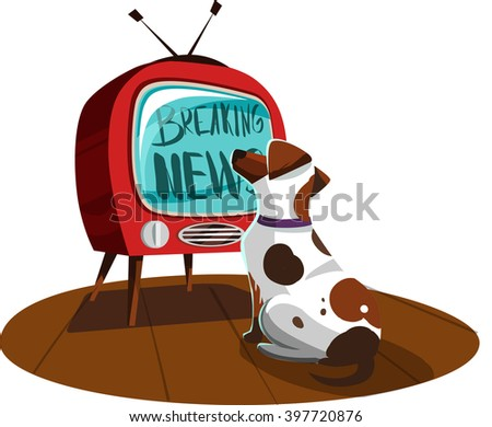 white dog watches the news on