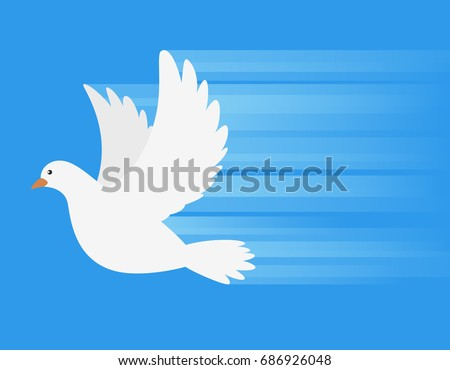 white dove flying with speed