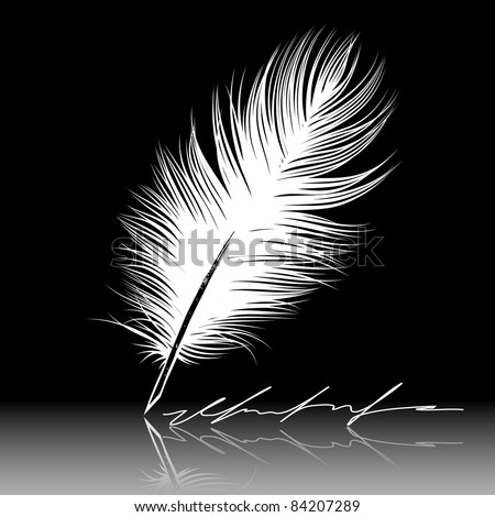 White feather pen drawing, quill, calligraphy tool.