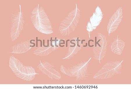White feathers set. Collection of different falling fluffy twirled feathers, Realistic style, Vector illustration. - Vector
