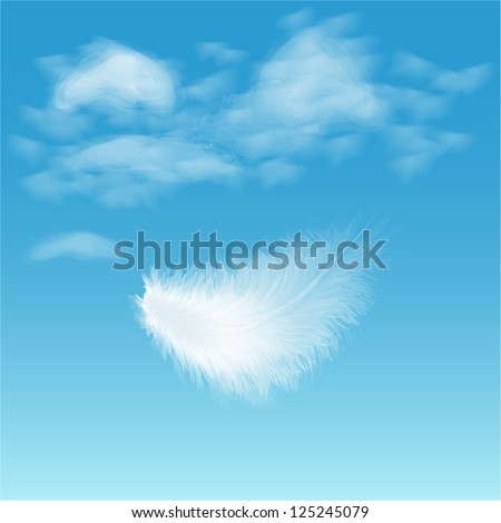 white fluffy feather on background of blue sky