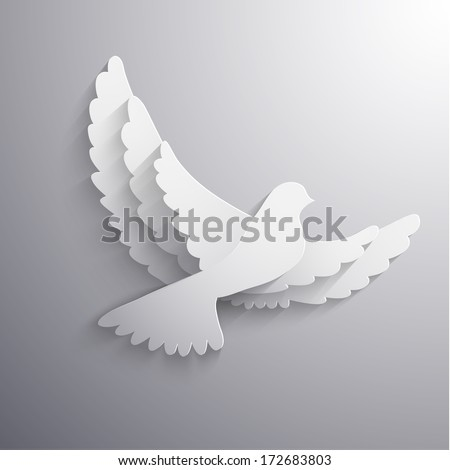 white flying dove abstract