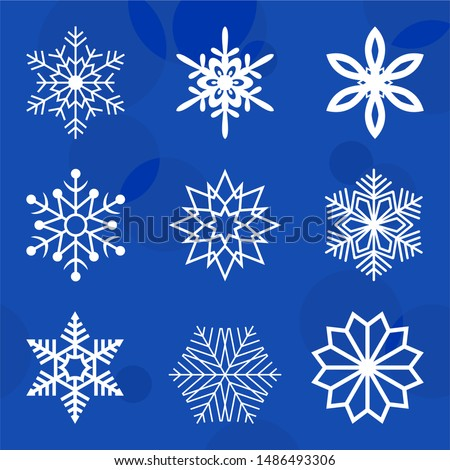 white frosty snowflakes on a